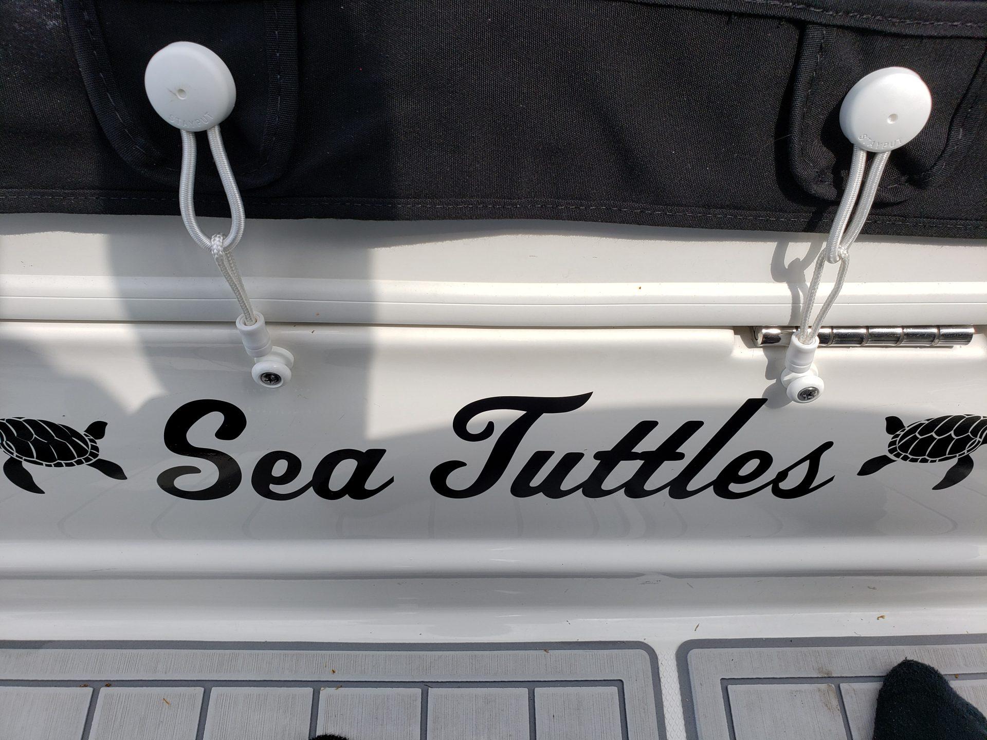 SeaTuttles