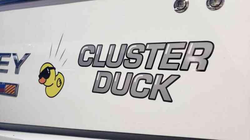 Cluster Duck 1